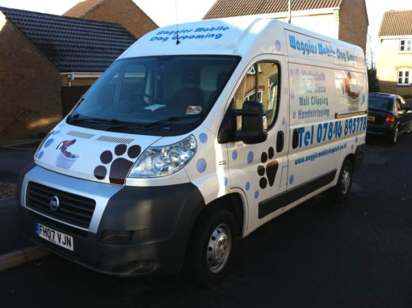 mobile dog grooming and washing Portsmouth Hampshire